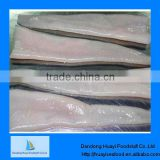 High quality geoduck clam meat