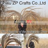 No.1 Supplier from ZPDECOR Factory Wholesale AAA Quality 140-150cm Super Long Natural Reeves Pheasant Tail Feathers