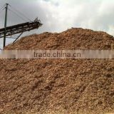 RUBBER WOODS CHIPS WITH HIGH QUALITY_GOOD PRICE