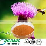 certificated Herbal products wholesaler pure Milk Thistle Extract Silymarin Cas65666-07-1