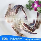 HL003 Delicious Frozen Swimming Half Cut Crab