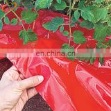 LDPE plastic mulch film rolls farming use