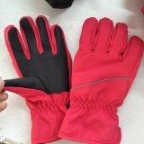 women gloves ,lady gloves , outdoor gloves , winter warm gloves , waterproof gloves