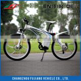 2015 hot selling 36V 250W bicycle with brushless hub motor, electric bike EAGLE(FJ-TDE01)