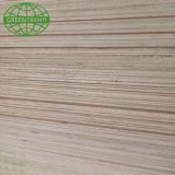 Linyi 18mm gray melamine board plywood from Greentre