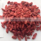 Bulk Goji Berries Price
