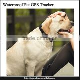 indoor and outdoor mini gps tracker,GPS Localizer/gps finder ,GPS Dog/Cat Tracker Pet Security System Mini GPS Tracker