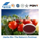 Favorable price best quality tomato extract lycopene 5-90%, tomato pigment (Halal and Kosher)