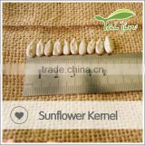 Inner mongolia sunflower seeds kernel 3638