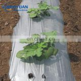 greenhouse silver/black weed control covering mulch film for strawberry and blueberry agricultural plastic film