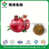 Hot Selling 100% Pure Pomegranate Peel Extract Powder for Healthcare Supplement