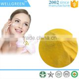WELLGREEN factory supply high quality coenzyme Q10 99% /coenzyme q10 powder Quality Choice