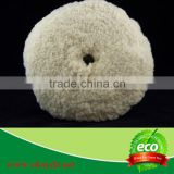 wool polishing pad for car