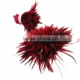 wholesale rooster feathers bulk Red color feather cock saddles                                                                         Quality Choice