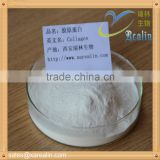 Fish scale collagen Powder for food and beverage additives