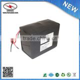 Polymer LiFePO4 Battery Pack 51.2V 20Ah (1024Wh, 16A rate) battery module
