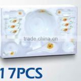17pcs Dinner Set Opal Glassware Heat Resistant Microwave Safe