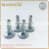 Self drilling screw with wafer head/ Carbon Steel screw