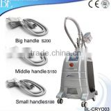 Lose Weight Guangzhou BL Popular Stationary Fat Freeze Fat Reduce Cryolipolysis Effective Body Slimming Beauty Machine With CE
