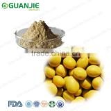 Manufacturer Supplier Top Quality Natural Soy Lecithin Powder 20% 50% / Soy bean extract/Phosphatidylcholine