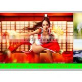 "SKD frameless 24"" inch digital LED advertising player module without case"