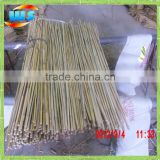 Bamboo Raw Materials/Used for the gardening bamboo cane 105CM/12-14MM