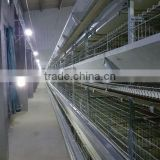 High Quality Broiler Battery Cage/Layer Chicken Battery Cage/Automatic Poultry Layer Cages System