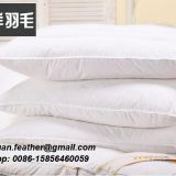 High Quality China factory wholesale Down and feather Pillow For 4 star hotel with piping