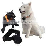Top quality automatic record digital mini Pet Collar Camera