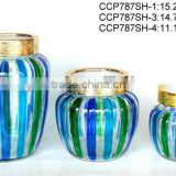 Hand-painted glass cookie jar with plastic lid (CCP787SH)