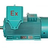 simo explosion proof ip56 motor