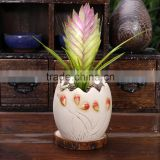 2016 small cheap porcelain decorative ceramic flower pots for Succulents plant