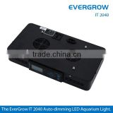 Evergrow IT2040 LED Aquarium Marine Reef Coral Light, Programme Controller Sunrise Sunset DIY Layout for Tank 36''