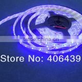 Purple 3528 single color 60 led strip dc12v ip65 waterproof silicon coating white pcb