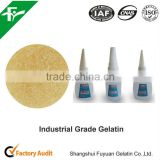 Top Quality Industrial Gelatin Powder For Hot Melt Adhesives Classification
