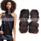 Hot selling 100% unprocessed overnight shipping brazilian hair afro kinky bulk human hair wholesale