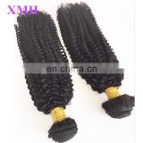 wholesale factory price virgin brazilian kinky curly hair afro kinky human hair kinky curly braiding hair