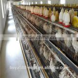 Africa Market Nigeria Farm Use Best Price Pullet Rearing Cage for one day old chicks