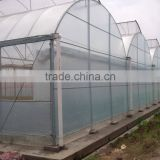 Hot-Dip Galvanized Steel Pipe Frame And 150mm PE Film Covered Multi-Span Greenhouse For Vegetables