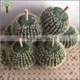 Factory make different sizes of artificial cactus ball