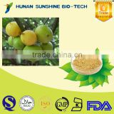 Well-being and low pesticide Garcinia Cambogia Extract for Weight Loss and Slimming 50% HCA