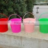 Small Multi-color Garden Flower Pot/Eco-friendly Flower Pot/Hanging Metal Small Flower bucket/Can