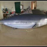 advertising inflatable fish model , inflatable fish shape for sale