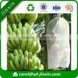 Inflatable banana sleeping bag/banana protection bag/protect bag for banana in best selling items