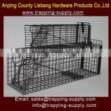 Suit Cage Home Depot Folding Live Animal Trap Cage For Raccoon Fox Cat Pest Control