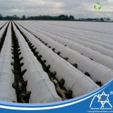 SGS Eco-Friendly PP Spun-Bonded Non-Woven Greenhouse