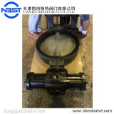 BLTD771XT-5KQ DN300 Hydraulic Control Marine Butterfly Valve With Thread Connection