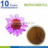 100% natural organic powdered echinacea purpurea extract