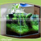 Best sales high quality aquaponics fish tank