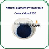 Manufacture directily offerNatural blue color Spirulina phycocyanin/ C-phycocyanobilin E250 in bulk